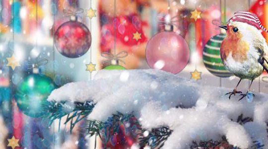 Frohe Weihnacht überall!